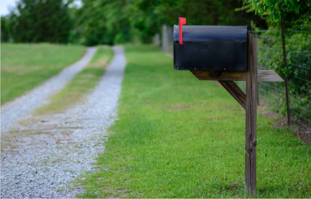 Public Health Needs the Mail